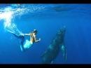 Красивая расслабляющая инструментальная музыка Real beautiful mermaids ever seen 1080p HD