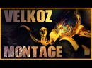 Vel'Koz Montage Life is GG