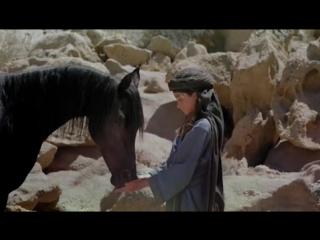 Рожденный в песках _ the young black stallion (2003)