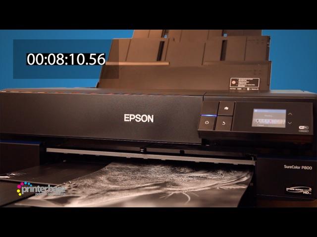 Epson SureColor SC P800 Fine Art Inkjet Printer Demonstration