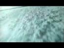 Евгения Смолянинова - В лунном сияньи