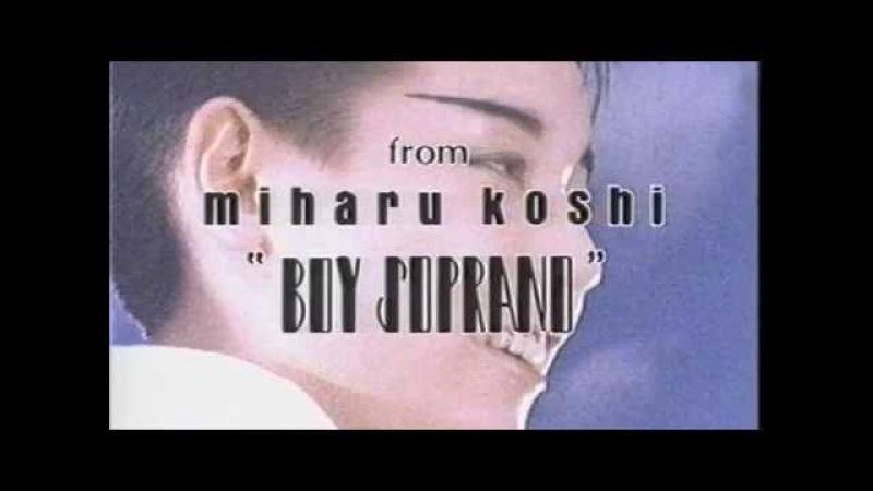 コシミハル 野ばら 1985 飴屋法水 miharu koshi norimizu ameya