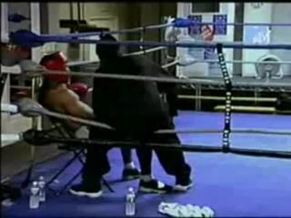 """Подстава от MTV с эштоном катчером  """" Бокс"""""""