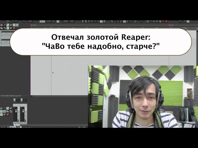 Reaper - Частые Вопросы (Инспектор, Tape Stop, SWS и пр.)