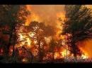 большой пожар в Щёлкино