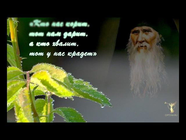 Росa мудрости духовной Изречения прп Амвросия Оптинского