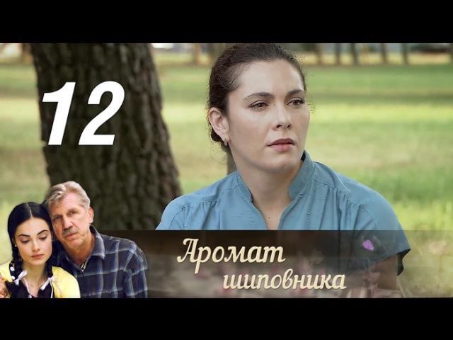 Аромат шиповника. 12 серия (2014) Мелодрама @ Русские сериалы