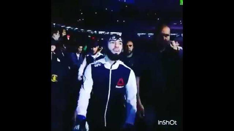 Зубайра Тухугов Чеченский лев Выход на бой Zubaira Tukhugov MMA UFC
