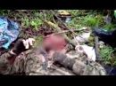 18 Ополченцы отстрелили голову карателю разведчику из Азова