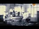 РЕН ТВ об истории кипрея Иван-Чая