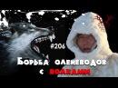 Борьба оленеводов с волками. Канал Охота и рыбалка в Якутии.