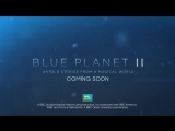 Blue Planet II  Preview  BBC Earth