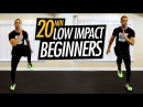 20 Minute Low Impact Cardio Workout for Beginners - Beginner No Jumping HIIT Cardio Workout
