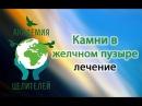 Николай Пейчев Камни в желчном пузыре лечение Часть 1 Академия Целителей