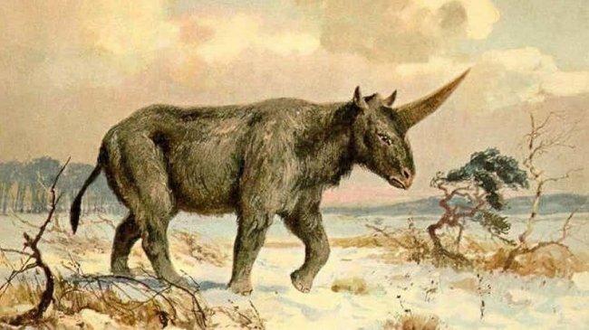 Интересные факты о Сибири, изображение №15
