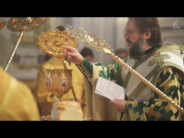 Божественная литургия апостола Иакова 2017 The Divine Liturgy of St James the Apostle 2017