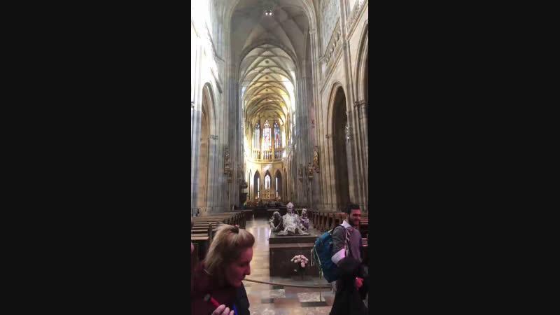 Live: Швейк тур: экскурсии по Праге Чехии и Европе