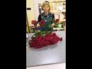 51 голландская роза 3160р