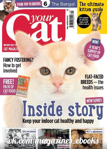 Your Cat-May 2018