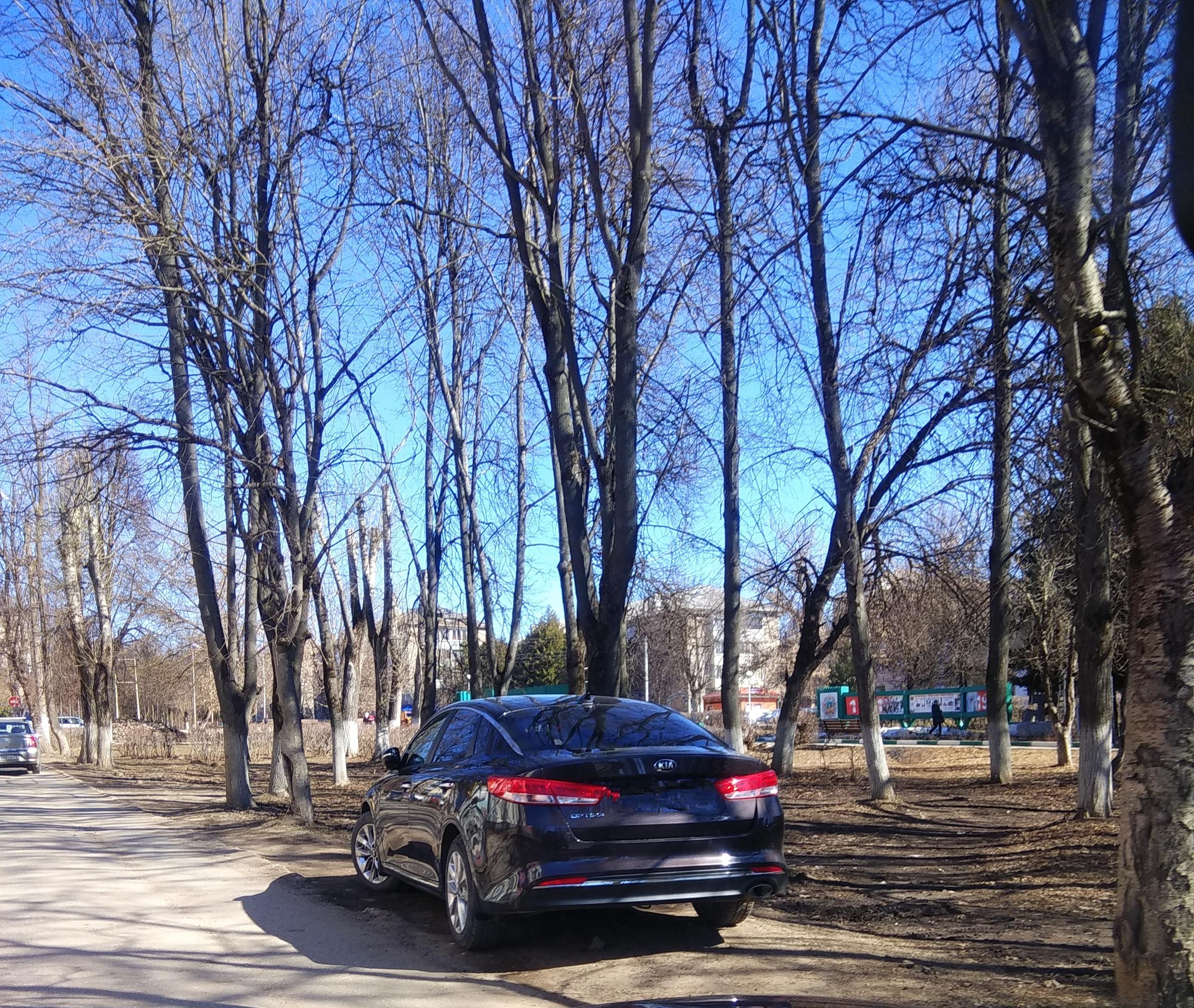 А давайте нахрен срубим деревья и сделаем парковку?