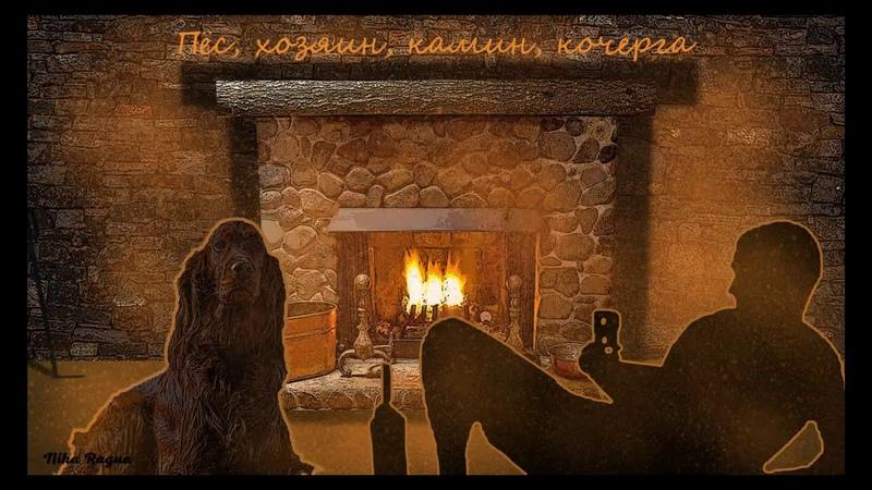 Стих- Пёс, хозяин, камин, кочерга. (автор Nika Ragua)