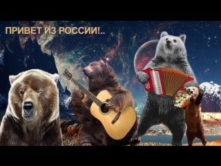 картинка привет россияне менее