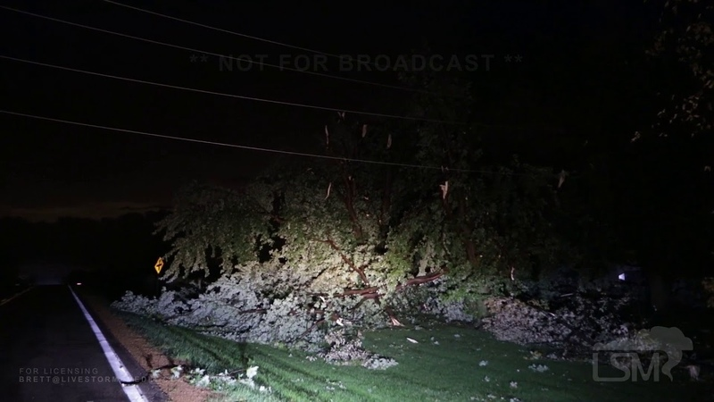 09022019 Mound, MN - Tornado Damage