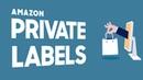Как открыть свой бизнес и заработать в интернете Разбираемся с Amazon Private Label. Бизнес идеи