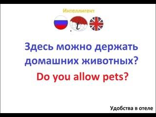 Здесь можно держать домашних животных? Учим английский язык. Курсы, репетиторы. Переводы с английского и на