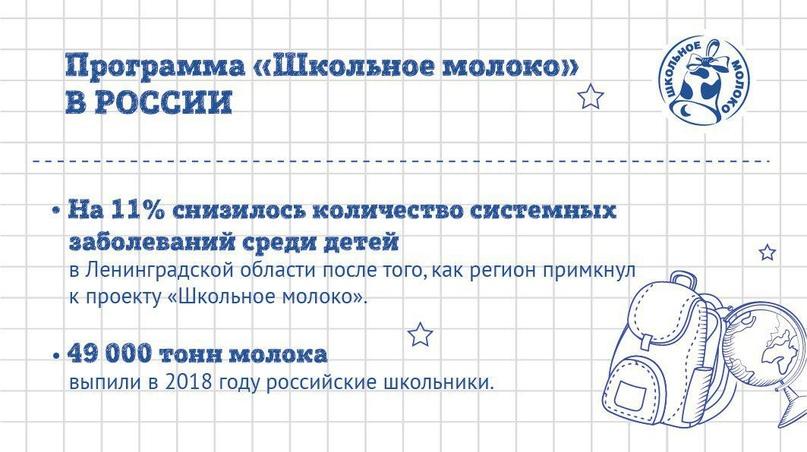 «Школьное молоко» в России: вклад в будущее, изображение №3