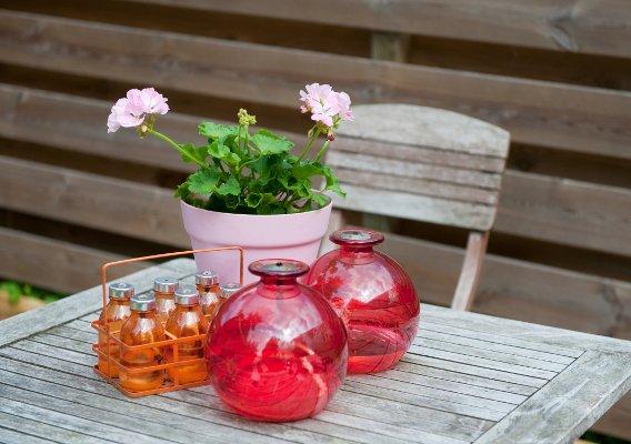Капля эфирного масла в цветочный горшок освежит комнату