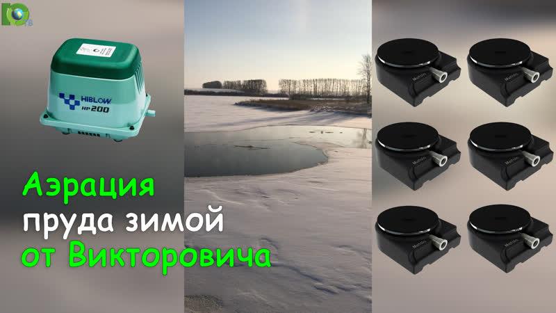 Аэрация пруда зимой Компрессор для пруда hiblow hp 200 Аэратор для пруда Matala mdb11 Интернет магазин