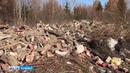 Хотели как лучше в Анжеро Судженске снесли бараки но строительный мусор увезли в лес