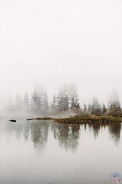 Туманная красота