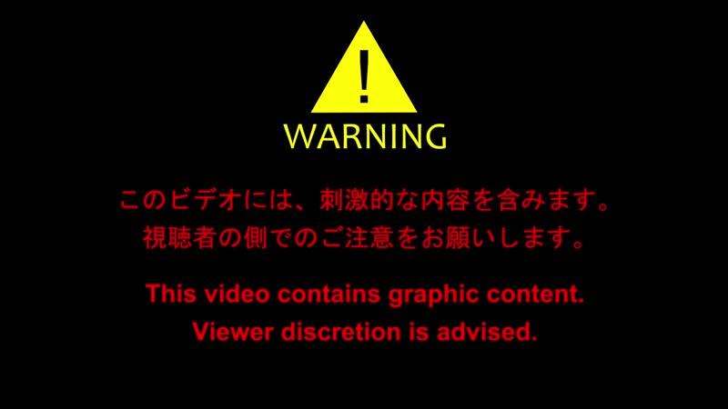 【自主制作アニメ】コマ撮りホラー 化けヤモリ(4-5) - Horror Stop Motion Animation.mp4