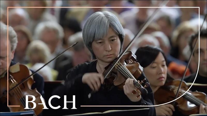 Bach - Gebt mir meinem Jesum wieder from St Matthew Passion BWV 244 | Netherlands Bach Society