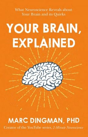 Your Brain  Explained - Marc Dingman