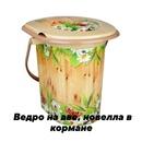 Фотоальбом Яны Заблоцкой