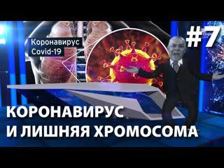 Тень Киселева - Коронавирус и лишняя хромосома ()
