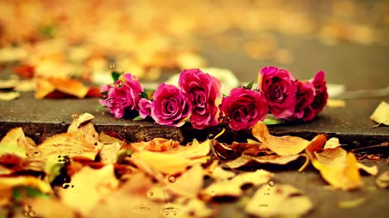 Мишель Легран - Осенняя грусть. Осень, дождь и саксофон...
