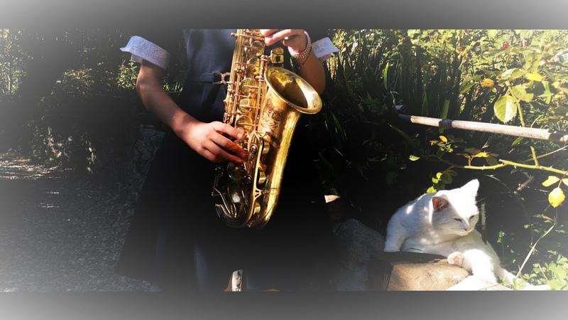 Спасибо родная (М. Боярский) на саксофоне.