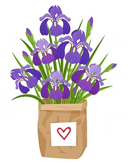 Что ваш любимый цветок может рассказать о вашей личности