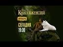 Художественный фильм «Книга джунглей» на Канале Disney!