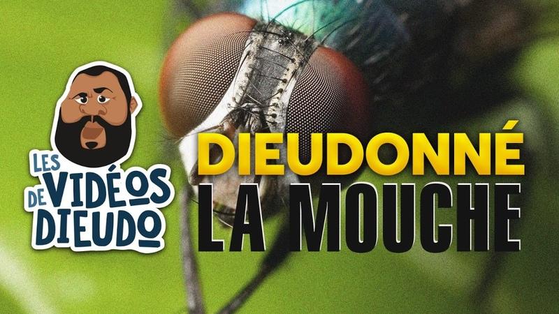 Dieudonné La Mouche