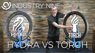 Hydra vs Torch: Sound Comparison!