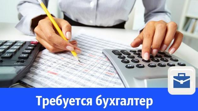 Вакансии бухгалтера в бюджетной организации работы бухгалтер на дому от работодателей