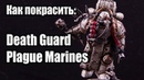 Как покрасить How to paint Plague Marines