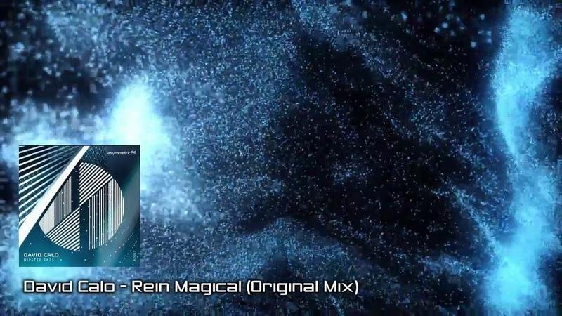 PREMIERE David Calo Rein Magical Original Mix Asymmetric Dip