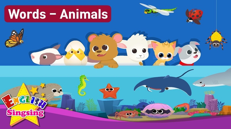 Kids vocabulary Theme Animals - Baby Animals, Sea Animals, Bugs, Animal Sounds