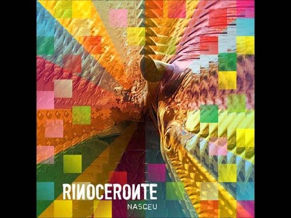 Rinoceronte O Choque Nasceu 2010 1